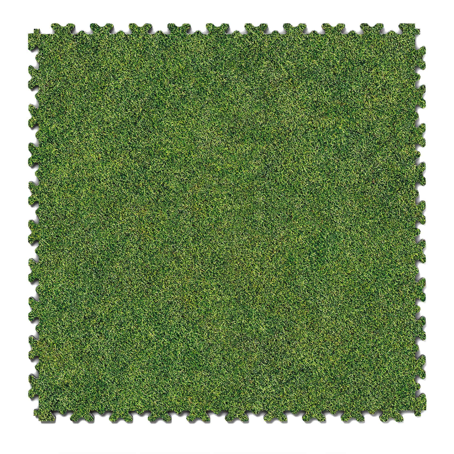 Druck Grass